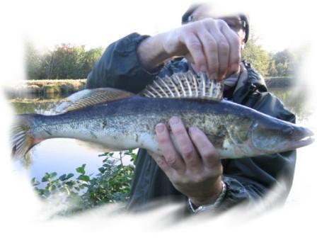 ¨Peche dans la somme, pêche en étang et pêche dans la rivière: La Somme