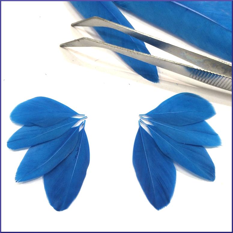 Positionnement des plumes pour des boucles d'oreille