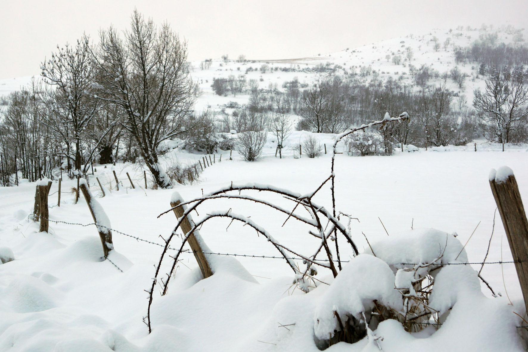 Sous la neige © MC