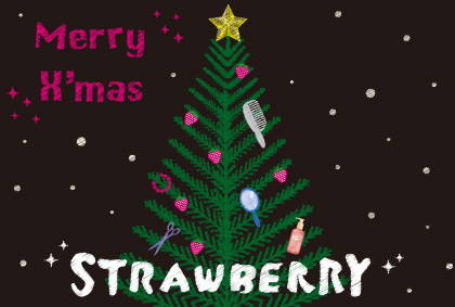 美容室strawberryさま  2011X'masDM
