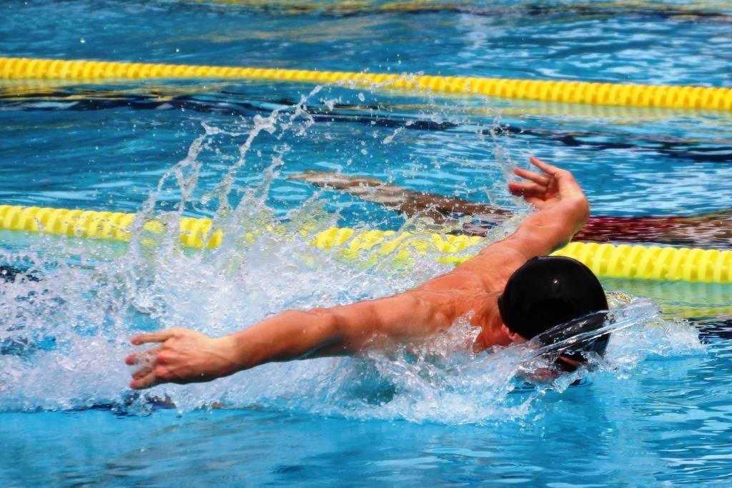 Delfinschwimmer