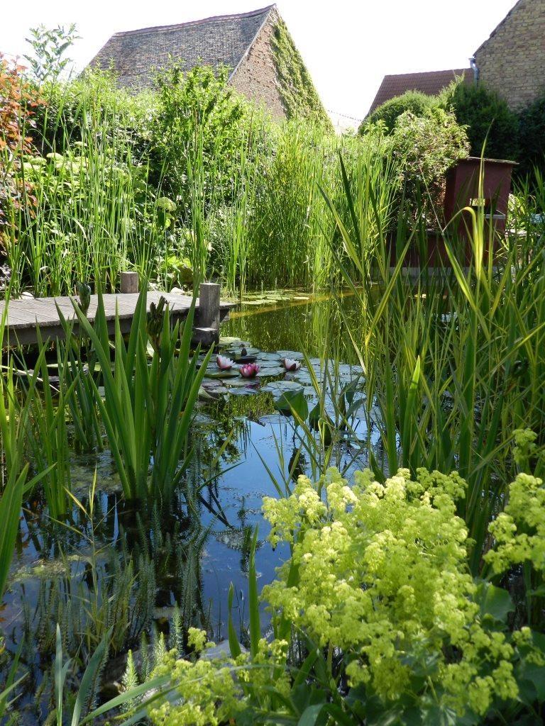 Tag der offenen Gärten, Dexheim, Deutschland