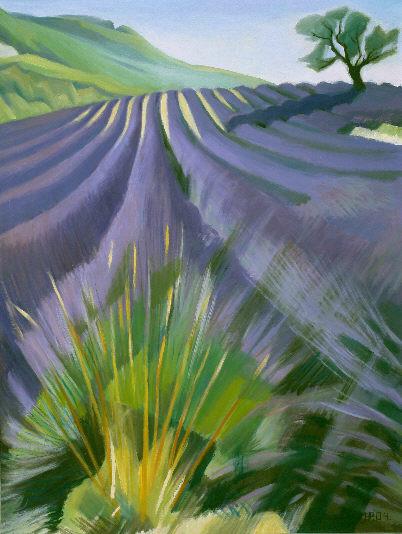 Lavendelfeld, Öl auf Leinwand