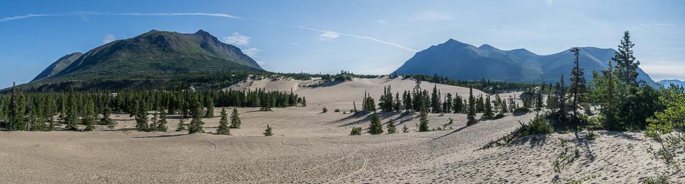 Carcross Desert, die angeblich kleinste Wüste der Welt