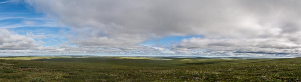 Tundra im hohen Norden
