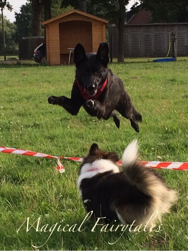 Kira kann fliegen...