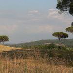 Lago Maggiore & Toskana