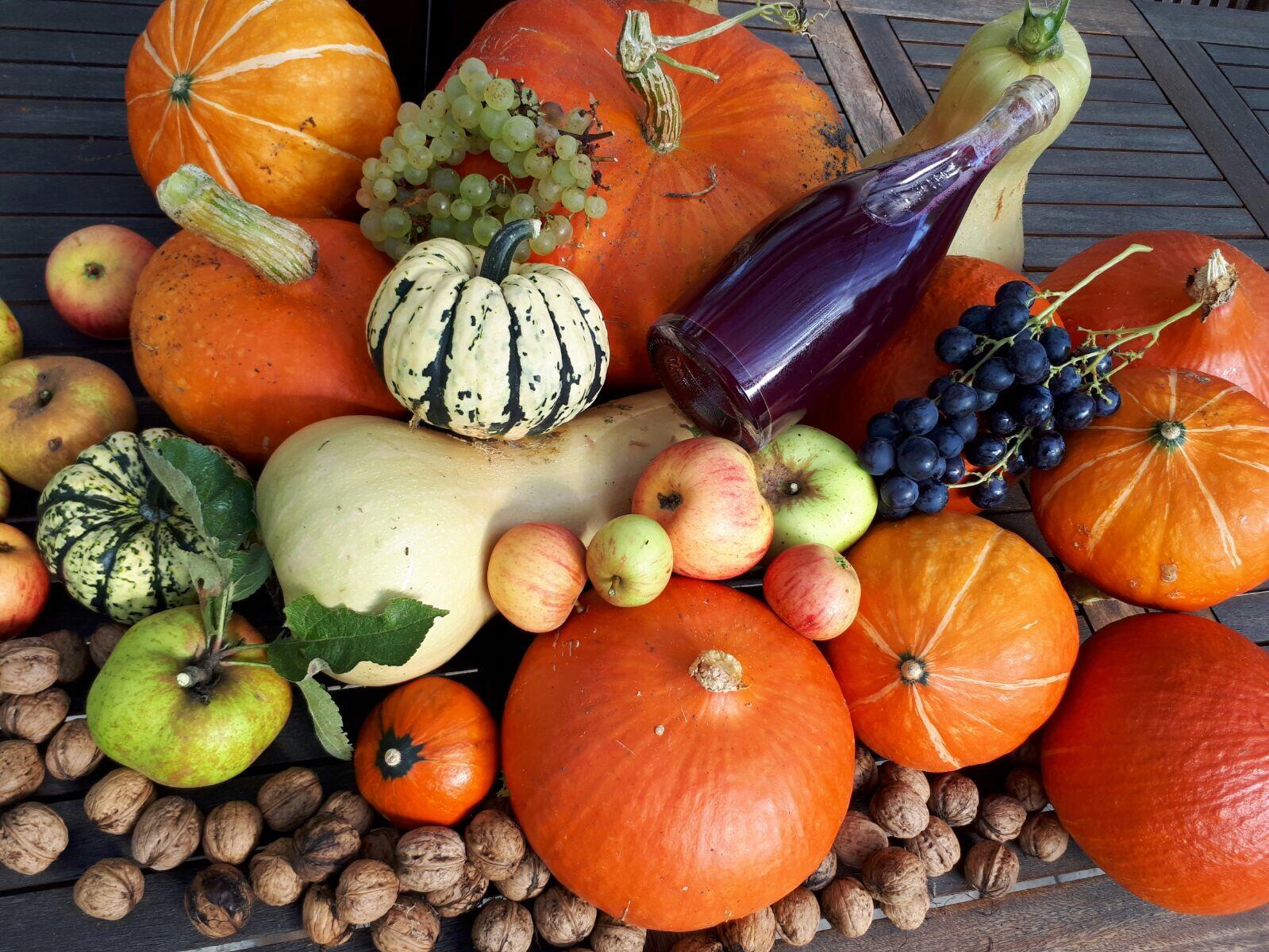 L'Anjou, jardin de France - vivez une expérience culinaire, saine et au grès des saisons au Domaine de Joreau