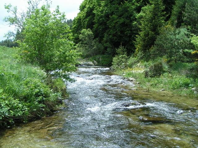 Un beau ruisseau ...