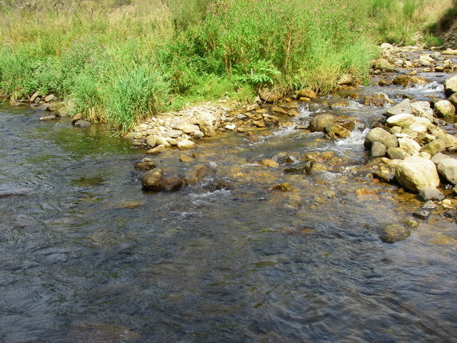 Confluence ruisseau de St Alban