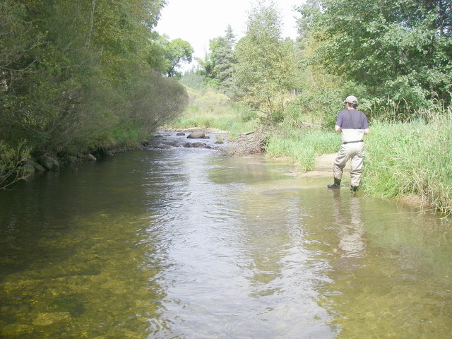 Confluence du ruisseau d'Arnier.