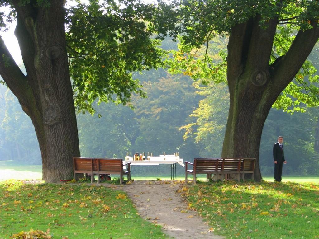 Bänke unter alten Bäumen im Jenischpark