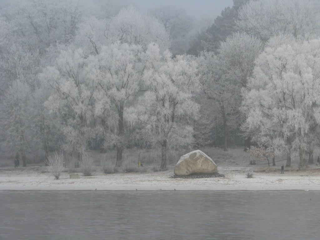 Findling Alter Schwede im Winter