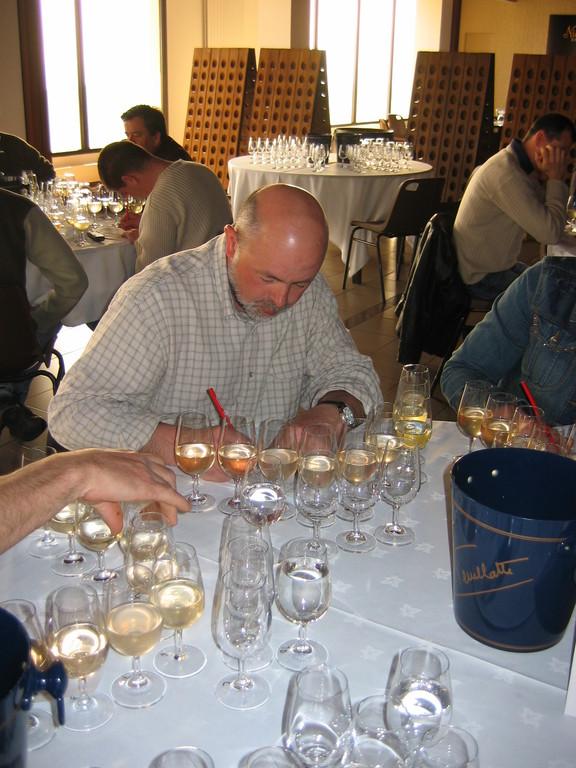 """dégustation de """"vin clair"""" : le Champagne n'a pas encore ses bulles divines"""
