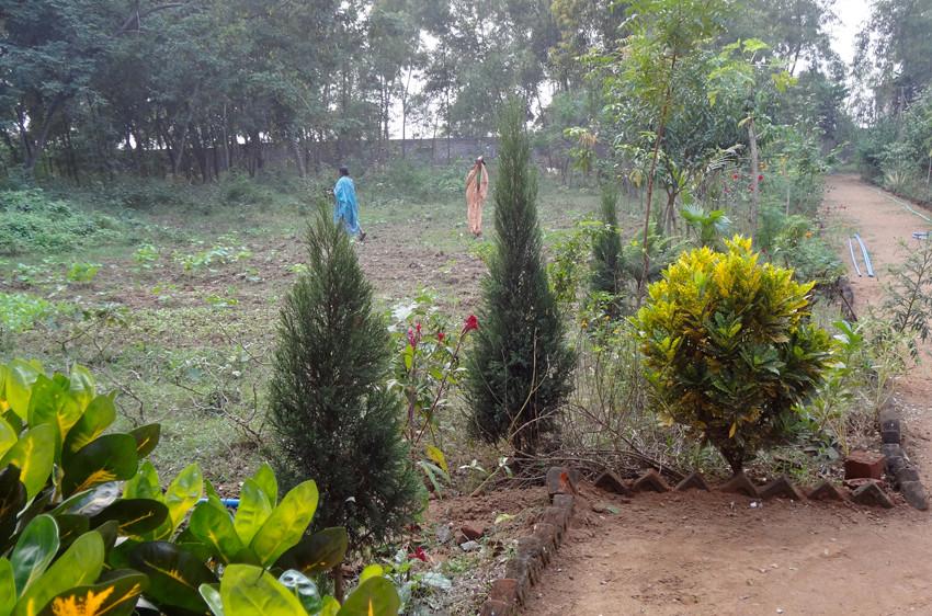 Zum Ashram gehört ein grosser Garten.