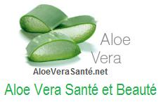 l'Aloe Vera agit sur l'acné