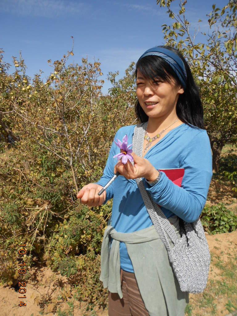 Avec Eku , en traductrice attentive de Hassan nous découvrons la fleur de Safran