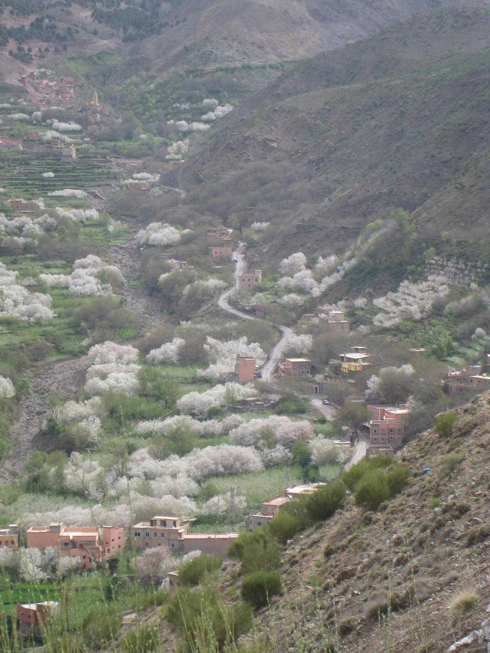 Paysage vert et fleuri des vallées