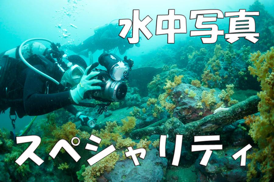 ダイビングがもっと好きになる!アンダーウォーターデジタルフォトグラフィーSP