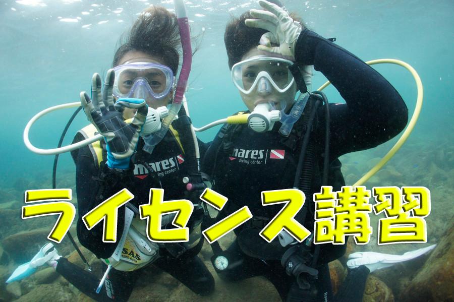 熊本天草体験ダイビングイメージ写真 ライセンス講習はこちら