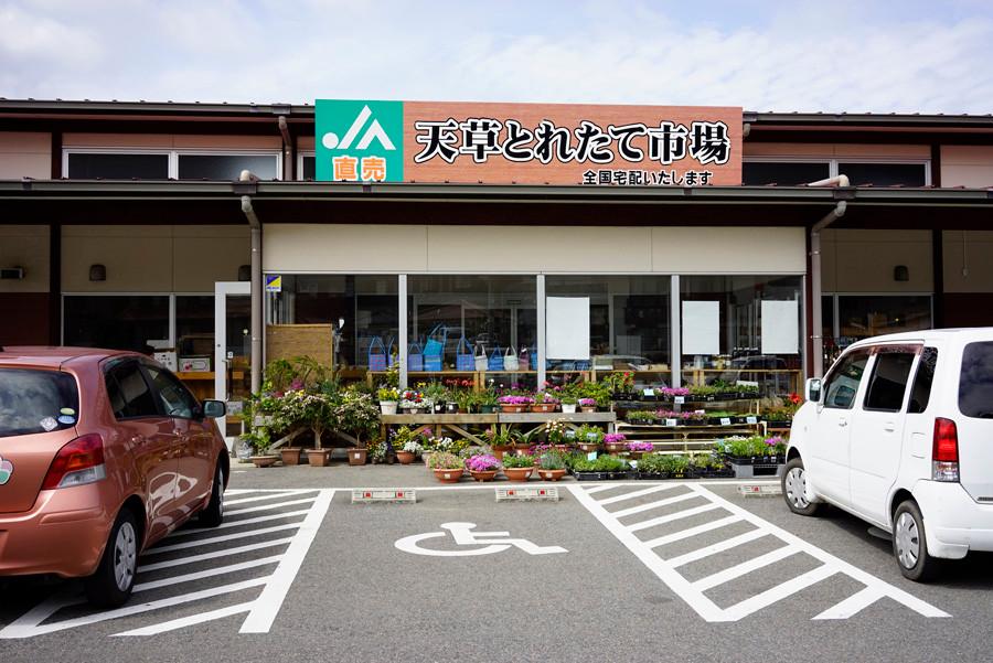 天草の物産館写真