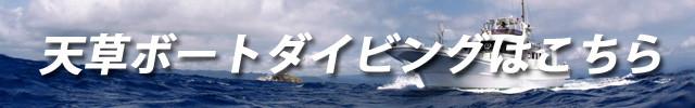 天草ボートダイビング情報はこちら
