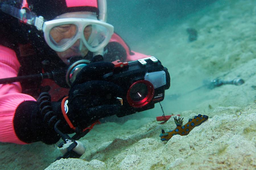 水没しても壊れない安心オリンパス防水カメラシリーズ