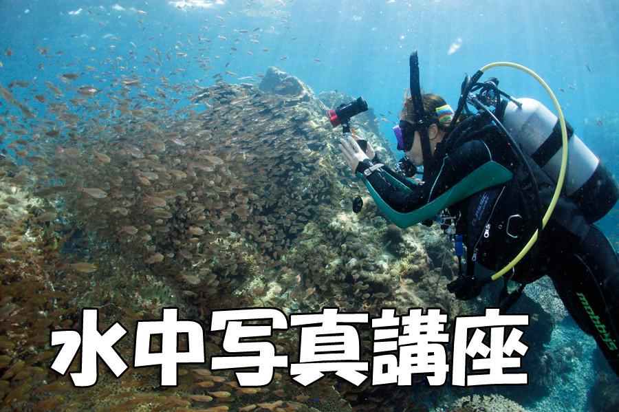 水中写真撮影フォト講座 イメージ写真