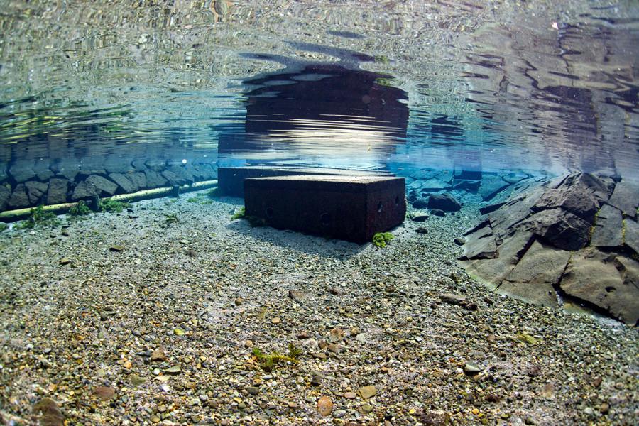 熊本湧水淡水ダイビング18 風景