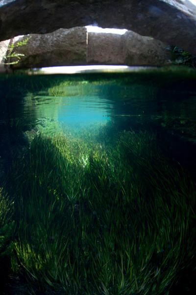 熊本湧水淡水ダイビング8 トンネル風景