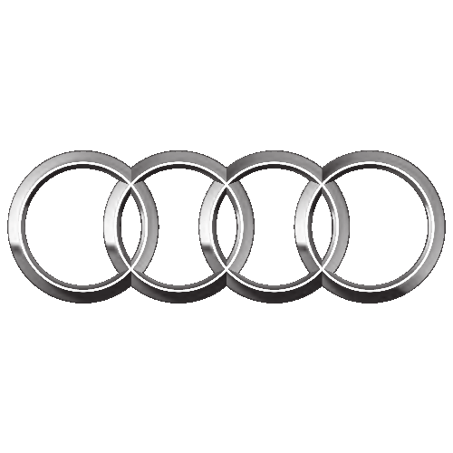 Audi Domlager