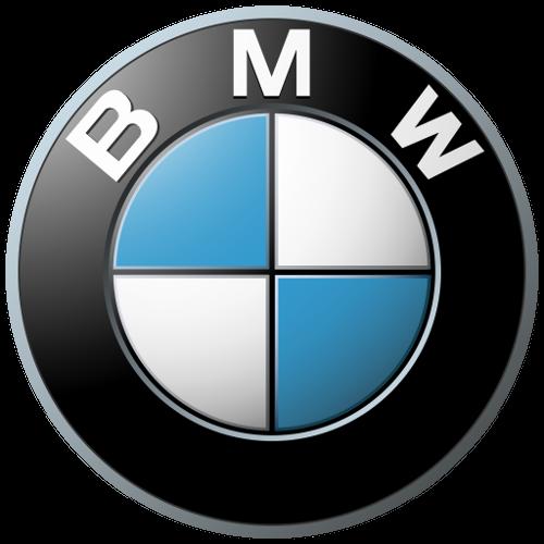 BMW Domlager