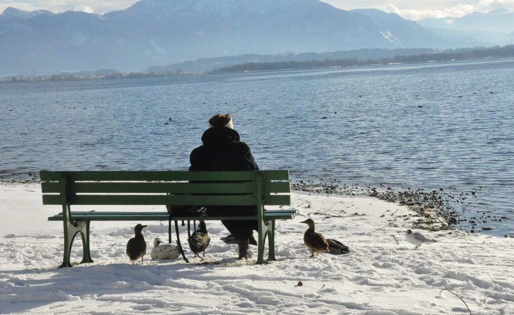 Warten auf Mittgessen/waiting for lunch