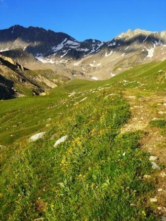 Vanoise : Rochers du Génépy ? - AU BOUT DES PIEDS