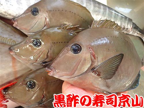 花見 出前 江東区 千田