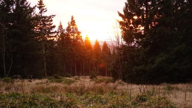 Sonnenuntergangsstimmung.
