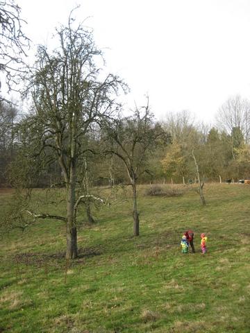Im Waldkindergarten