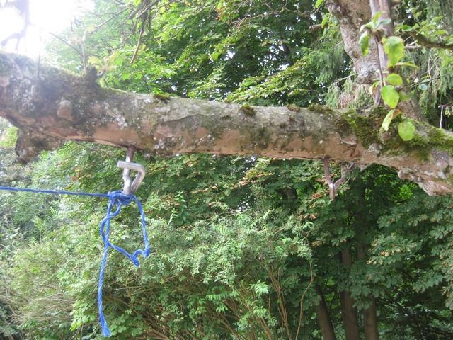 Schaukelbefestigung am Baum
