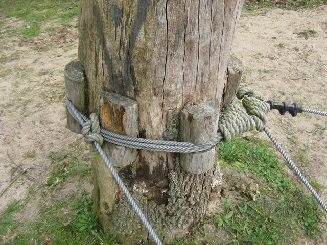 Baumschutz für Slackline und andere Elemente