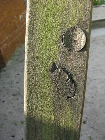 Scharfes Holz