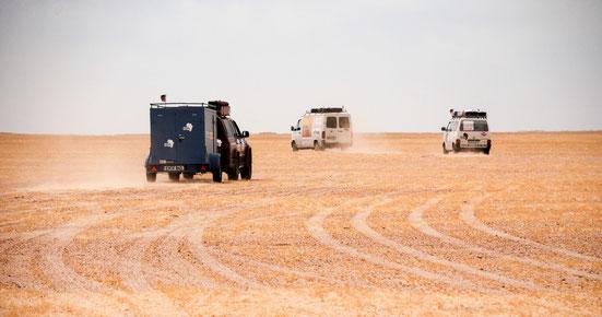 Der Drive to Help-Konvoi in der Sahara (Frühjahr 2014)