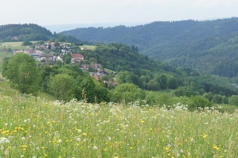 Horben im Schwarzwald bei Freiburg i.Brsg.