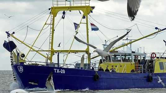 """<img src=""""image.png"""" alt=""""De TX 20 (WALRUS) op zee bij Texel"""">"""