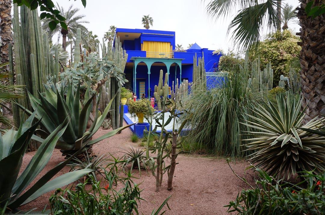 Garden Jardin Majorelle