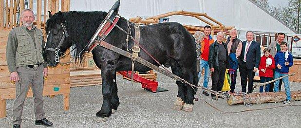 Umweltschonendes Holzrücken mit einer Pferdestärke demonstrierte Martin Thoma (l.) auch Landrat Franz Meyer (4.v.r.).