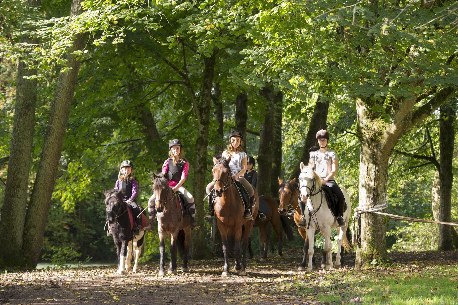 Equitation - Cheval et poney - Ecurie de Jeand'Heurs et Baudonvilliers