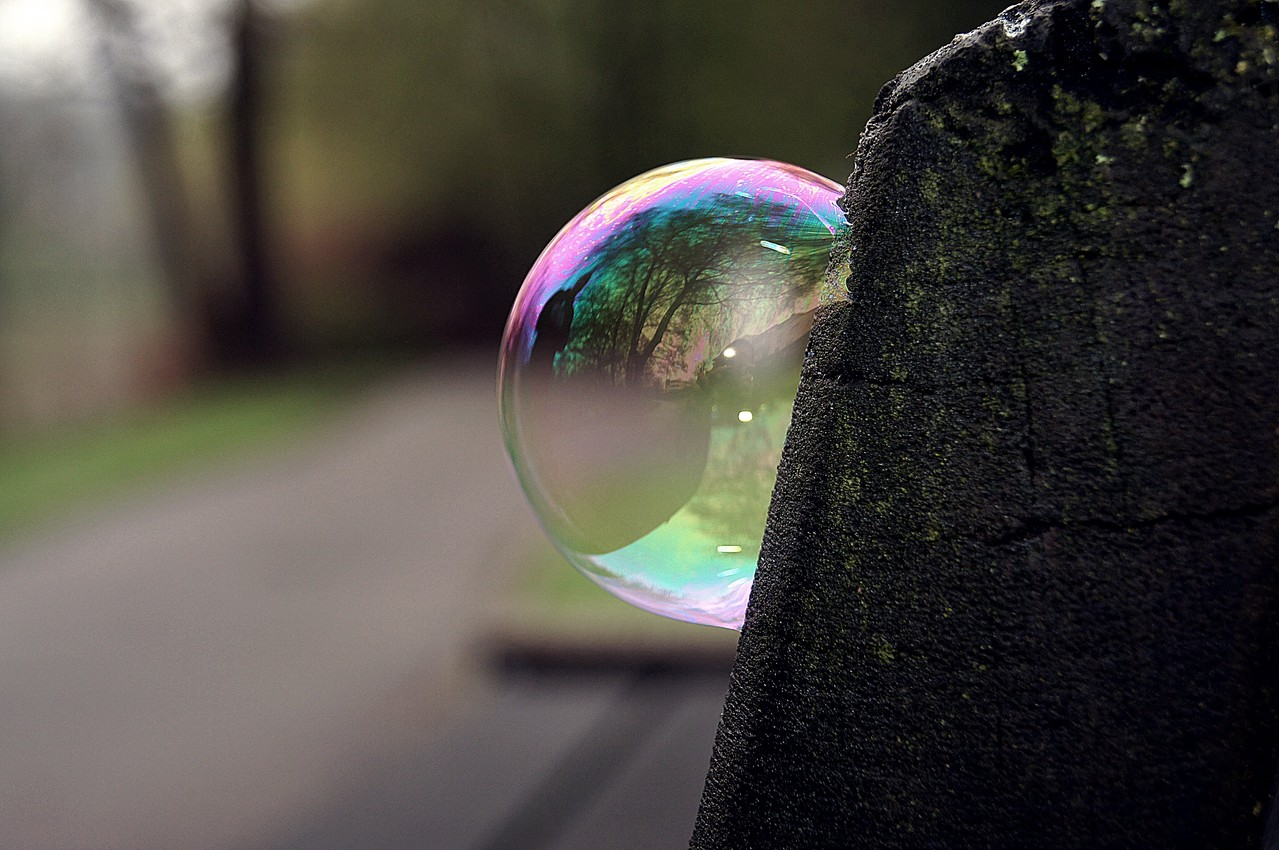 soap bubble on bench 2013