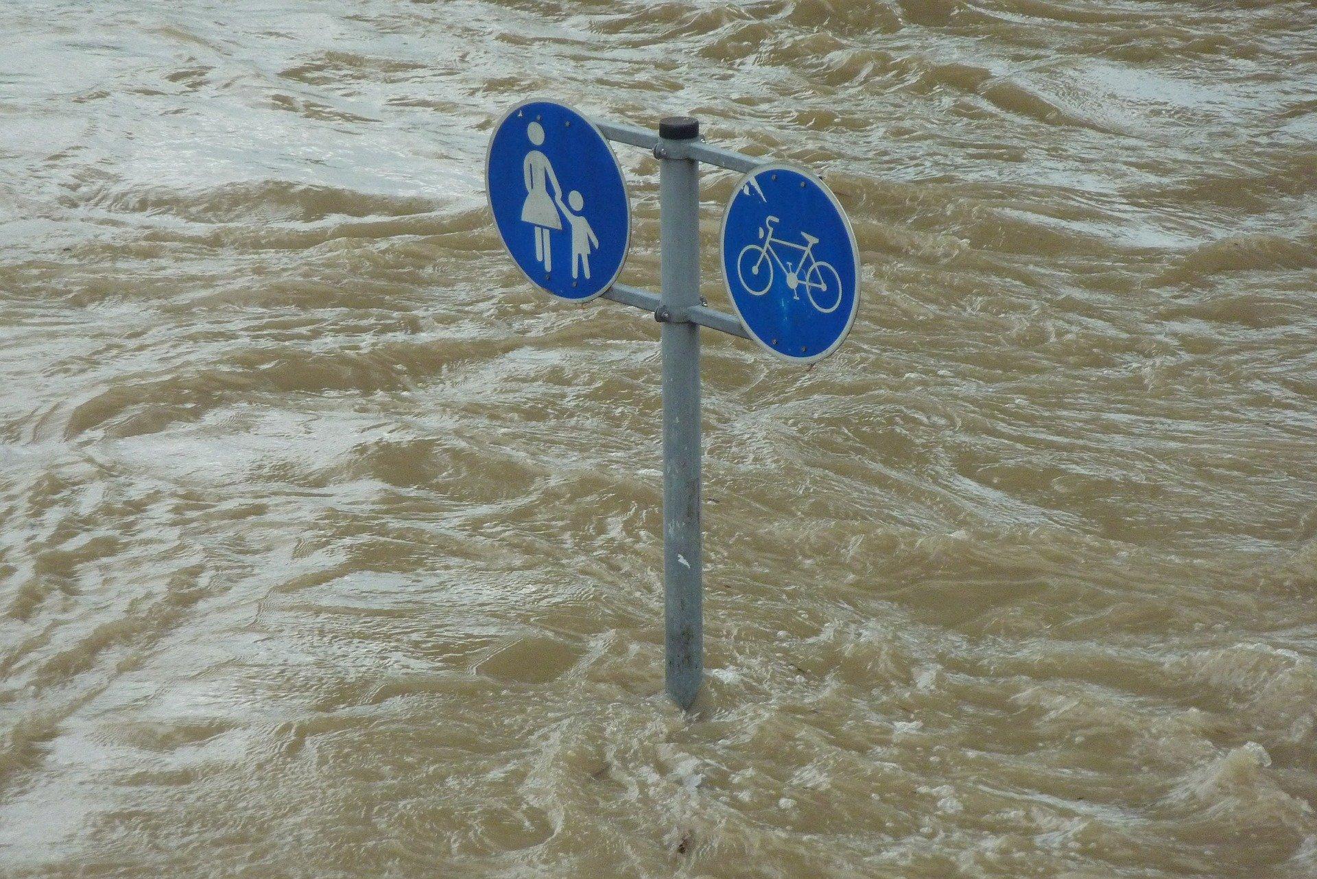 BVB plant Benefizspiel für Hochwasser-Opfer