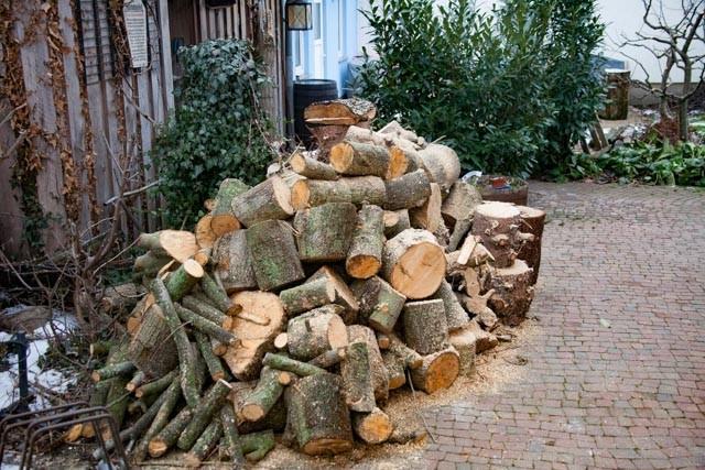 Brennholz auf 30cm zurechtgeschnitten
