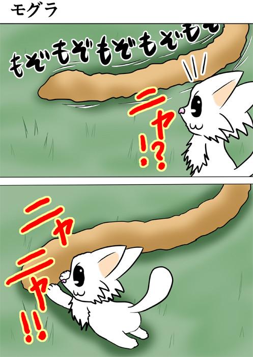 うごめく土を捕まえるマンチカン猫 ふわもふ猫の日常四コマweb漫画210話1p